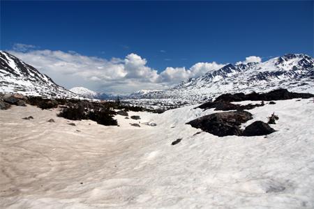 Snow fields at Yukon, off Skagway, Alaska.